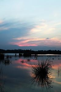 2010-11-21 Kampina Sunsets