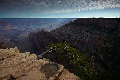 View into the Grand Canyon
