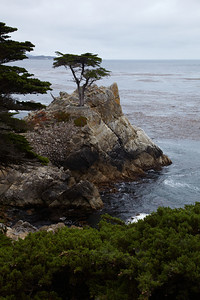 2011-08 USA - Monterey
