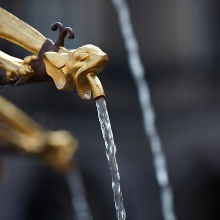 Detail of the fountain on 'Het Binnnehof'