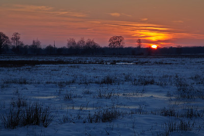 sunset over a snowy meadow