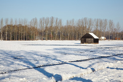 Snowy fields between Oirschot and Best