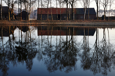 Reflections of a farm and trees near Oirschot