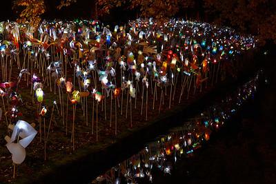 GLOW for kids - Fladderaars van licht
