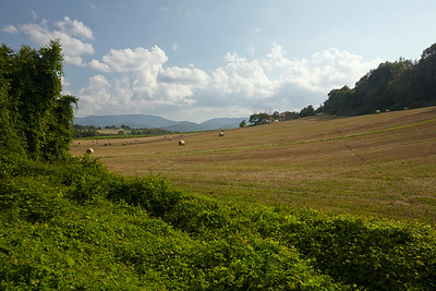 The landscape around agritourismo La Topaia