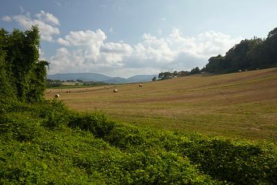 The landscape around agritourismo La Topaia