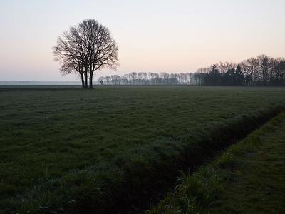 2016-04 Welschap