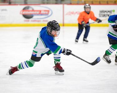 201602021_Hockey_Brady