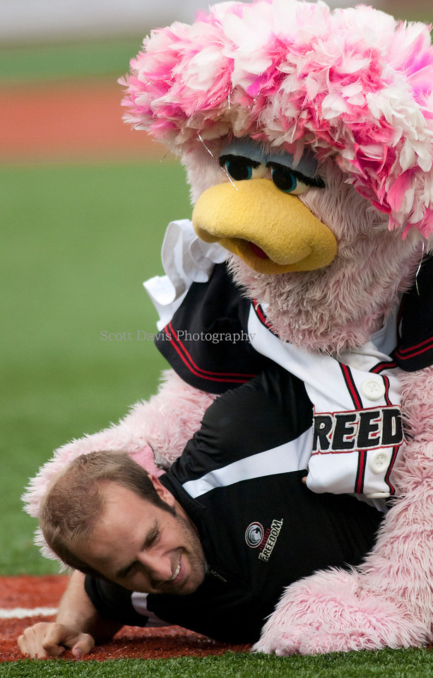 Florence Freedoms Mascot Belle attacks a member of the grounds crew.(Cincysportszone/Scott Davis)