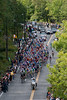 The peloton works its way up the Mount Royal climb.