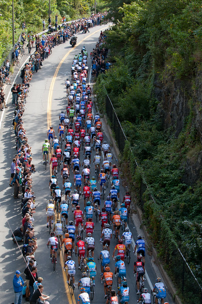 The peloton works its way up a canyon on the Mount Royal climb.