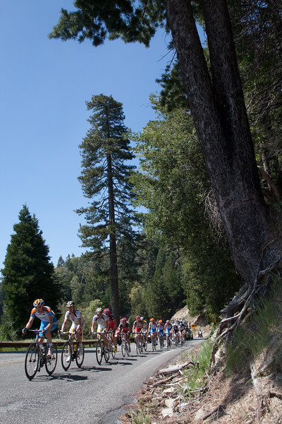 The Peloton now has a garmin rider on the front as it nears the top of the final KOM of the day.
