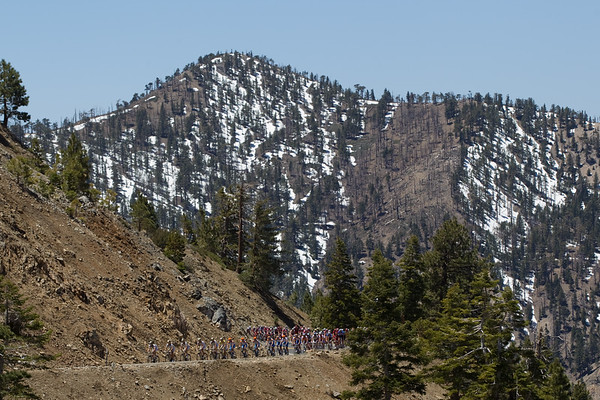 It is scenic here as the peloton rounds another bend in the San Burnadino National Forest.