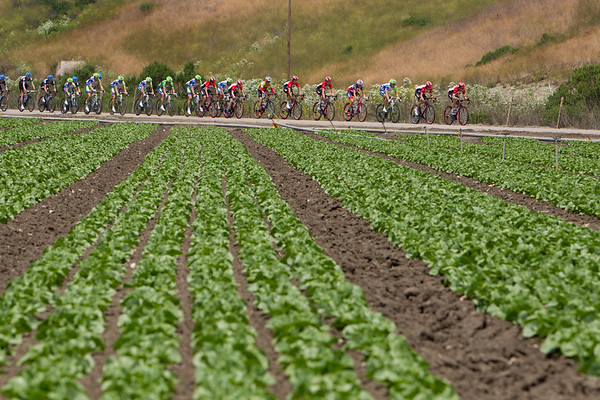 The peloton begins to string out with RadioShack's pace making.