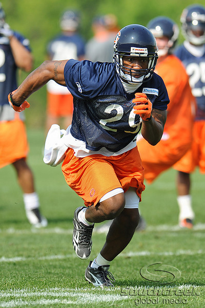 21 May 2010:  Running back Chester Taylor (29) runs a pass route during the Chicago Bears minicamp practice at Halas Hall in Lake Forest, Illinois.<br /> Mandatory Credit - John Rowland / Southcreek Global