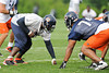 21 May 2010:  Defensive tackle Tommie Harris (91) lines up across from offensive tackle Chris Williams (74) during the Chicago Bears minicamp practice at Halas Hall in Lake Forest, Illinois.<br /> Mandatory Credit - John Rowland / Southcreek Global
