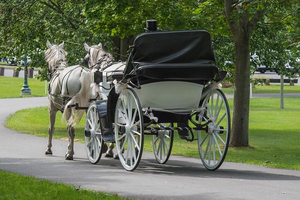 Wedding Guest Transportation