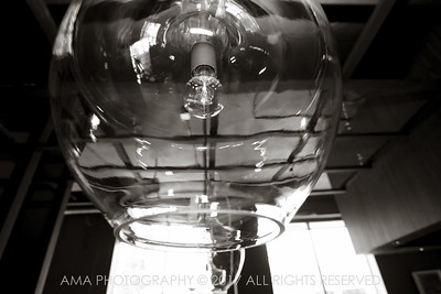 Telegraph_AMAPhotography-13