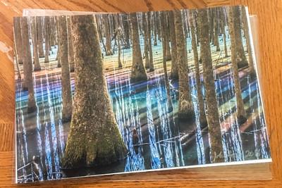 Unframed paper print