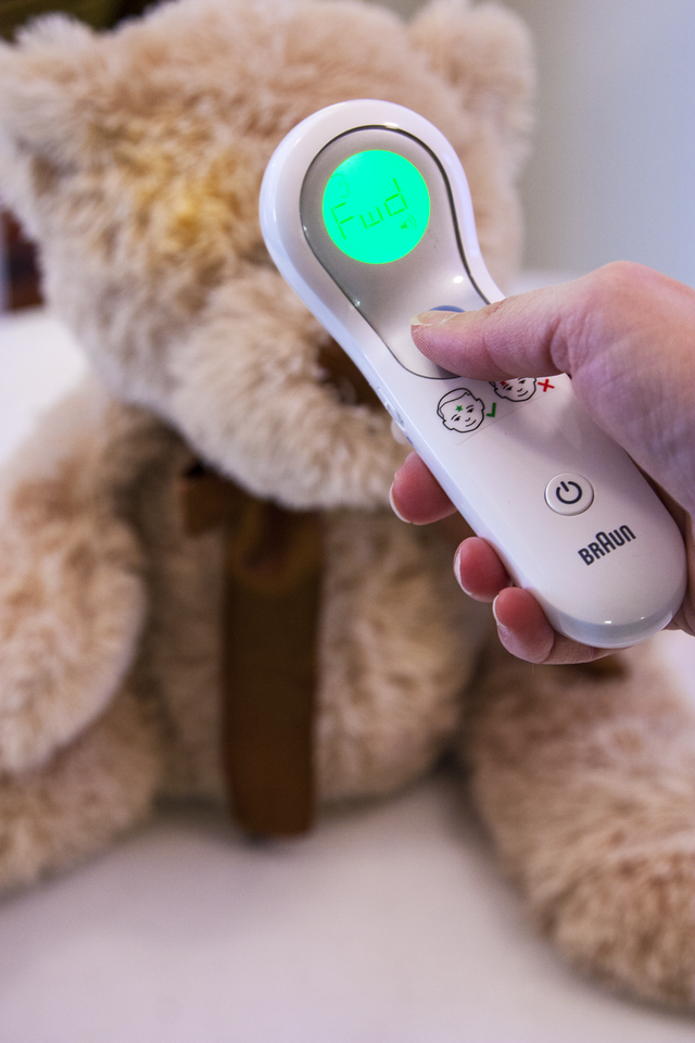 Using the Braun No Touch + Forehead Thermometer to Take Bear's Temperature