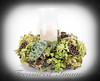 _DSC1200-floral-round-w-candle-v2-w-vignette