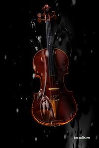 violin-0008_pe-2