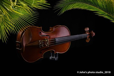 01-violin-360-DSC_0023-Edit_pe