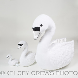 Swanling-19