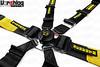 Schroth Enduro 2x2 FHR 6 Point HANS Belt Harness