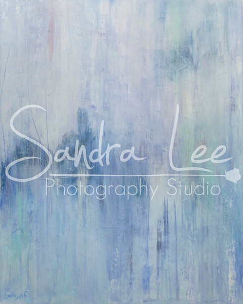 Amy Art Paintings photographed by Sandra Lee Photography