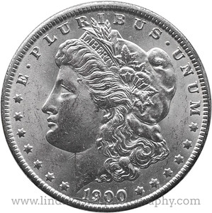 One dollar Coin 1900