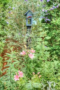 Garden-05 Web