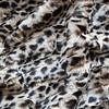 LA-Leopard