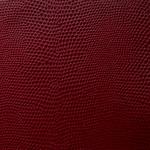 Komodo-Scarlet