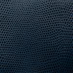 Komodo-Cobalt
