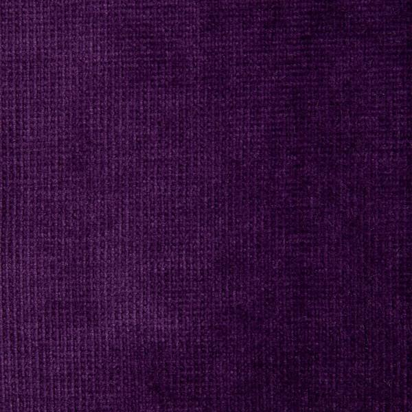 Violet-855