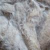 Biege Frost Sochi Sable