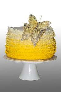 Cake-02 B