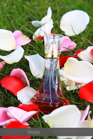 Bottle026