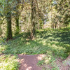 11151 Kendall Way-52 MLS
