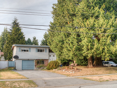 11443 75th Ave-03 MLS