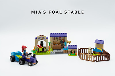 Mia's Foal Stable