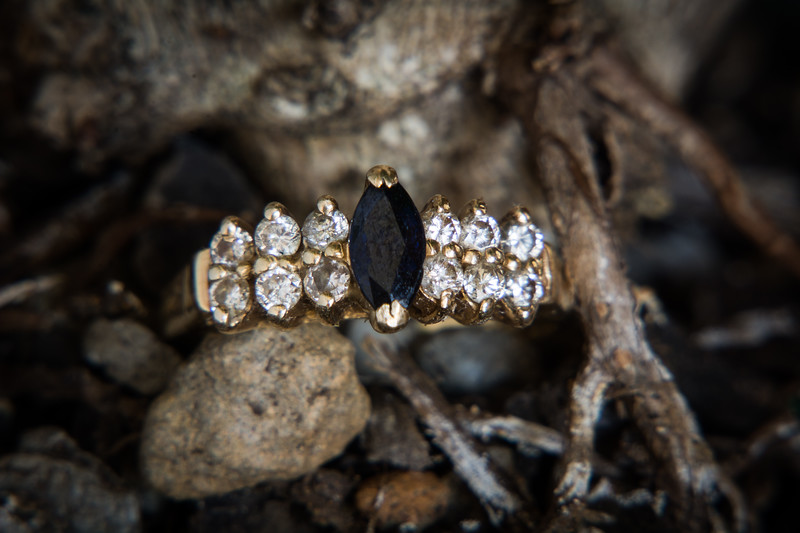 Diamond and onyx ring on plant roots.