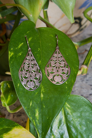Silver earrings on a plant leaf.
