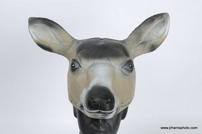 Prototype Mule Deer