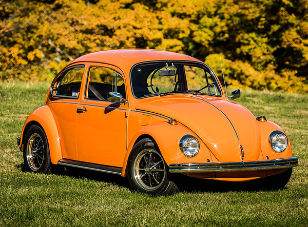 Bobs Orange Bug-43