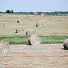 Spring hay harvest. NRCS photo by Beverly Moseley.