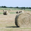 Spring hay harvest. NRCS photo by Beverly Moseley