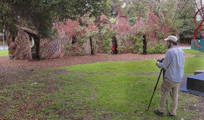 Patrick Doughtery Stick Sculpture  -- 1