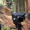 Redwoods_122011_Kondrath_0074